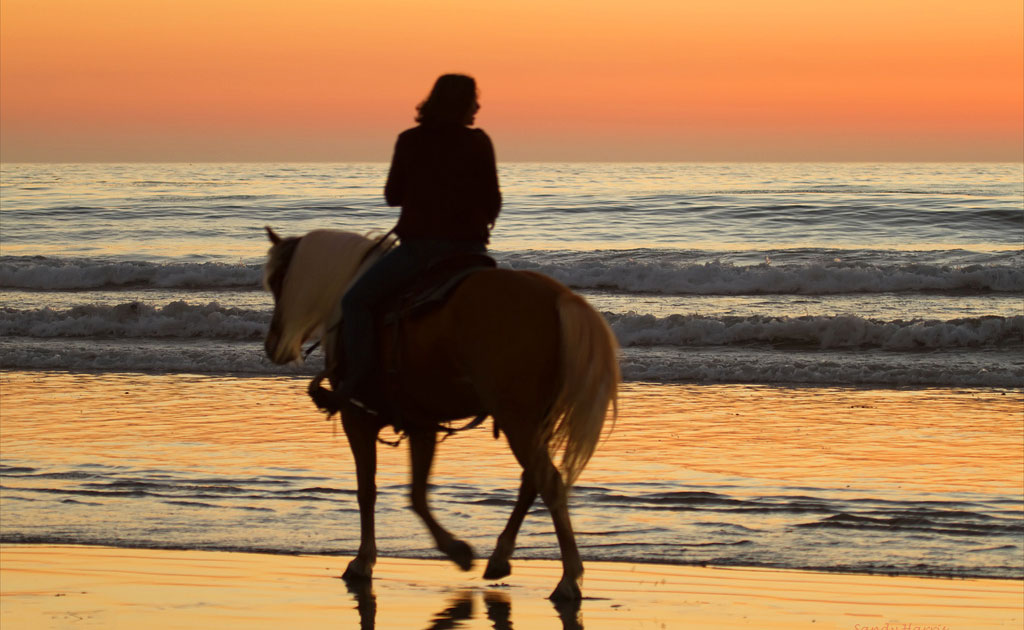 Sunset-Horse-Ride-by-Sandy-and-Chuck-Harris-Flickr-1024x630